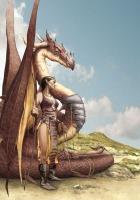 Elfe & Dragon en cours net